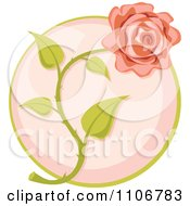 Clipart Pink Rose Over A Circle Royalty Free Vector Illustration