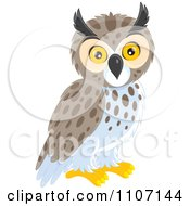 Clipart Cute Owl Royalty Free Vector Illustration by Alex Bannykh