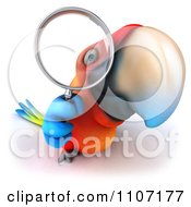 Clipart 3d Macaw Parrot Searching And Looking Through A Magnifying Glass 1 Royalty Free CGI Illustration