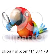 Clipart 3d Macaw Parrot Searching And Looking Through A Magnifying Glass 2 Royalty Free CGI Illustration