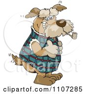 Clipart Scottish Terrier Dog Smoking A Pipe And Holding A Thumb Up Royalty Free Vector Illustration