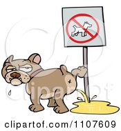 Clipart Bulldog Peeing On A No Dogs Sign Royalty Free Vector Illustration