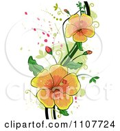 Clipart Yellow Hibiscus Flowers Over Swirls And Splatters Royalty Free Vector Illustration