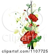 Red Poppy Flowers Over Swirls And Splatters