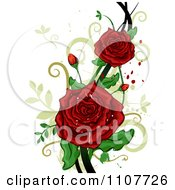 Red Rose Flowers Over Swirls And Splatters