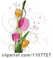 Clipart Pink And Yellow Tulip Flowers Over Swirls And Splatters Royalty Free Vector Illustration
