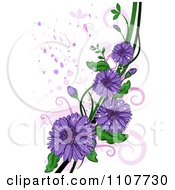 Clipart Purple Gerbera Daisy Flowers Over Swirls And Splatters Royalty Free Vector Illustration