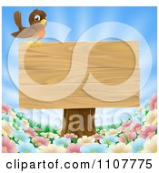 Robin Perched On A Blank Wood Sign On A Tree Stump Over Spring Flowers