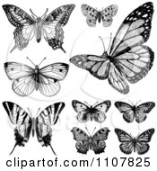 Clipart Retro Black And White Vintage Butterflies 1 Royalty Free Vector Illustration
