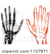 Clipart Xrays Of Human Hands 1 Royalty Free Vector Illustration by Lal Perera