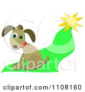 Clipart Brown Dog Sitting On Grass In The Sun Royalty Free Vector Illustration by bpearth