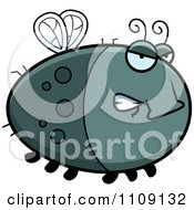 Clipart Chubby Angry Fly Royalty Free Vector Illustration