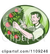 Clipart Retro Woodcut Farmer Pruning Apple Trees In An Orchard Royalty Free Vector Illustration