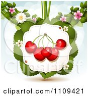 Clipart Bing Cherries On Leaves With Blossoms And Ladybugs Over Blue With Flares Royalty Free Vector Illustration by merlinul