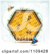 Clipart Bees A Butterfly And Honey Combs In A Hexagon With Grass Royalty Free Vector Illustration
