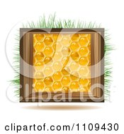 Honeycomb Square With A Wood Frame And Grass
