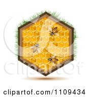 Clipart Bees On A Honey Comb Hexagon With Grass Royalty Free Vector Illustration