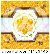 Clipart Bees And Honeycombs With A Natural Label Over Clovers 4 Royalty Free Vector Illustration