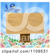 Happy Blue Bird Presenting A Wooden Sign Over Wild Flowers On A Sunny Day