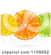 Clipart Flares Over Lemon Orange And Lime Slices Royalty Free Vector Illustration