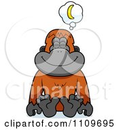 Orangutan Monkey Daydreaming Of Bananas