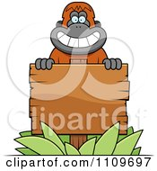 Clipart Orangutan Monkey Behind A Wood Sign Royalty Free Vector Illustration by Cory Thoman