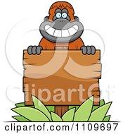 Orangutan Monkey Behind A Wood Sign
