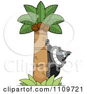 Clipart Gorilla Behind A Coconut Palm Tree Royalty Free Vector Illustration by Cory Thoman