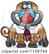 Clipart Baboon Monkey In A Shirt And Tie Royalty Free Vector Illustration