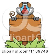 Clipart Baboon Monkey Behind A Wooden Sign Royalty Free Vector Illustration by Cory Thoman