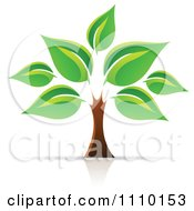 Clipart Tree Of Life With Large Green Leaves Royalty Free Vector Illustration by cidepix #COLLC1110153-0145