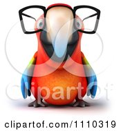 Clipart 3d Macaw Parrot Wearing Glasses 1 Royalty Free CGI Illustration
