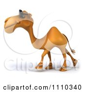 Clipart 3d Camel Wearing Sunglasses And Walking 1 Royalty Free CGI Illustration