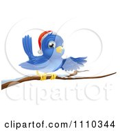 Clipart Presenting Christmas Bluebird Wearing A Santa Hat And Perched On A Branch With Snow Royalty Free Vector Illustration