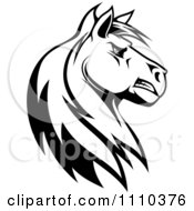 Clipart Black And White Tough Stallion Head Royalty Free Vector Illustration