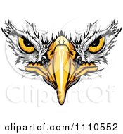 Clipart Bald Eagle Face With Menacing Eyes Royalty Free Vector Illustration