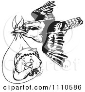 Clipart Black And White Aussie Kookaburra Bird Delivering A Baby Wombat Royalty Free Vector Illustration by Dennis Holmes Designs