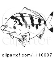 Clipart Black And White Salt Water Marine Fish 5 Royalty Free Vector Illustration by Dennis Holmes Designs