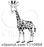 Clipart Black And White Giraffe Royalty Free Illustration by Dennis Holmes Designs