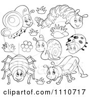 Clipart Outlined Butterfly Caterpillar Spider Snail Ladybug And Grasshopper Royalty Free Vector Illustration by visekart