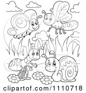 Clipart Outlined Butterfly Dragonfly Ant And Snail Royalty Free Vector Illustration by visekart