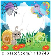 Clipart Blank Copyspace Bordered With A Spider Butterfly Snail And Grasshopper Royalty Free Vector Illustration by visekart