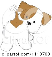 Clipart Cute Puppy Looking Back And Wagging His Tail Royalty Free Vector Illustration by Maria Bell #COLLC1110763-0034