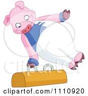 Athletic Gymnast Pig On The Pommel Horse