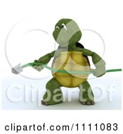 3d Tortoise Stretching A Green Network Cable