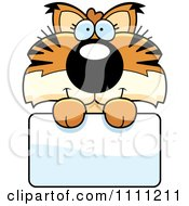 Clipart Cute Bobcat Cub Over A Sign Royalty Free Vector Illustration by Cory Thoman