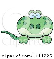 Clipart Cute Gecko Lizard Peeking Over A Sign Royalty Free Vector Illustration