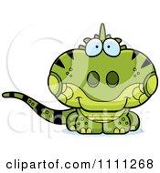 Cute Iguana Lizard