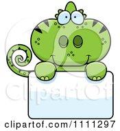Cute Green Chameleon Lizard Over A Sign