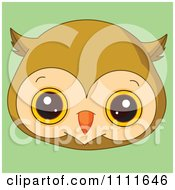 Clipart Cute Owl Avatar Face On Green Royalty Free Vector Illustration by Pushkin